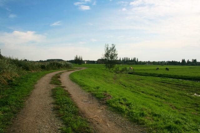 「オランダ世界遺産キンデルダイクからの帰り道」のフリー写真素材を無料ダウンロード