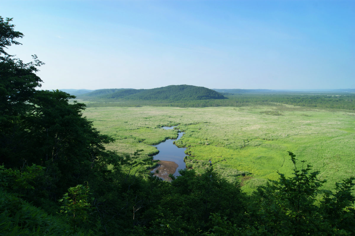 """The view from the Kottaro Wetland Observatory of Japan's largest wetland """"Kushiro"""""""