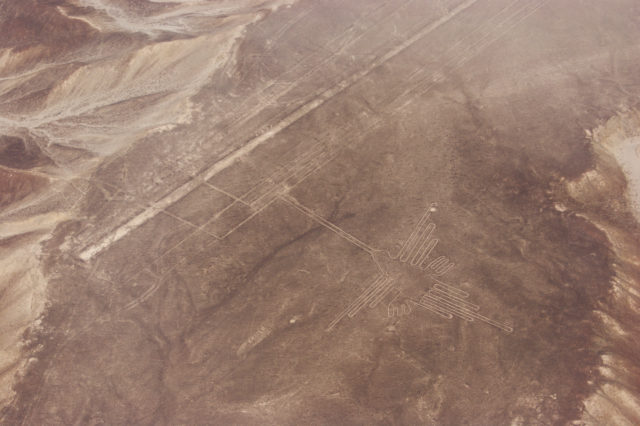 Free stock photos of [Hummingbird on the Nazca Lines]