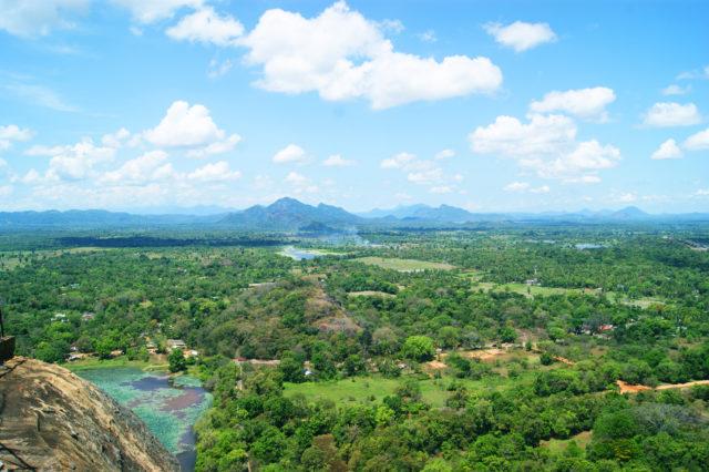 Free stock photos of [Nature seen from above Sigiriya Rock]